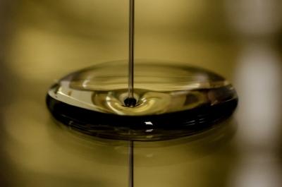 Öl: Die wichtigste Saison naht
