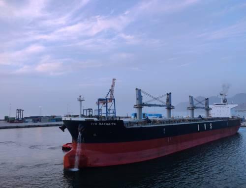 Kreuzfahrt-Reedereien: Erleichterungs-Rallye
